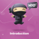 woo-introduction