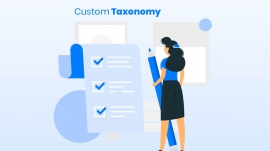 what is custom taxonomy