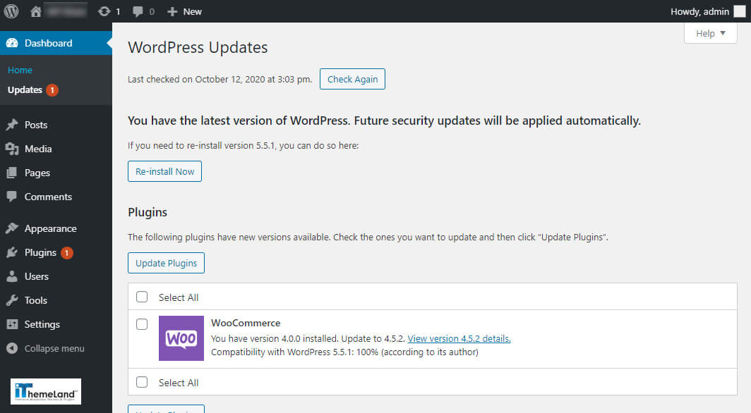 Wordpress update page