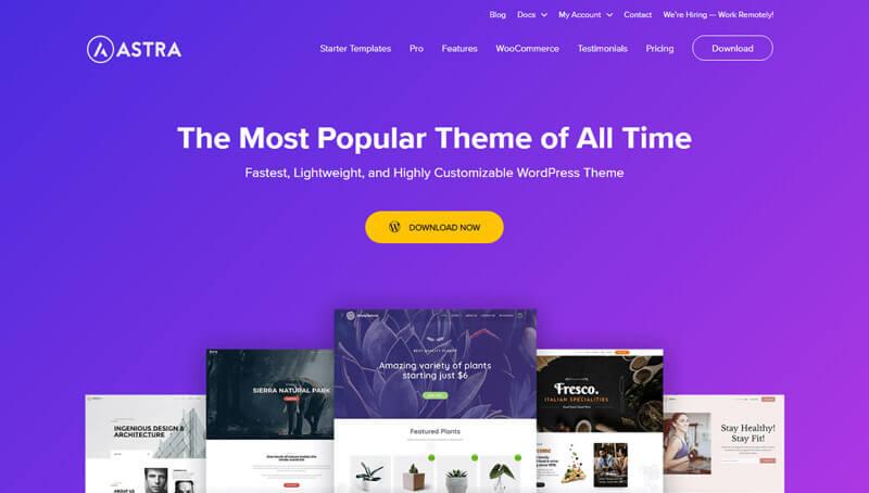 Astra WordPress theme demo page