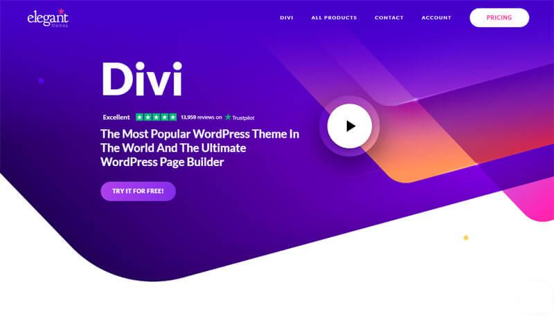 Divi WordPress theme demo page