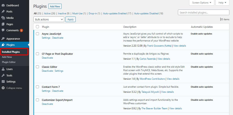 installed plugin page in WordPress