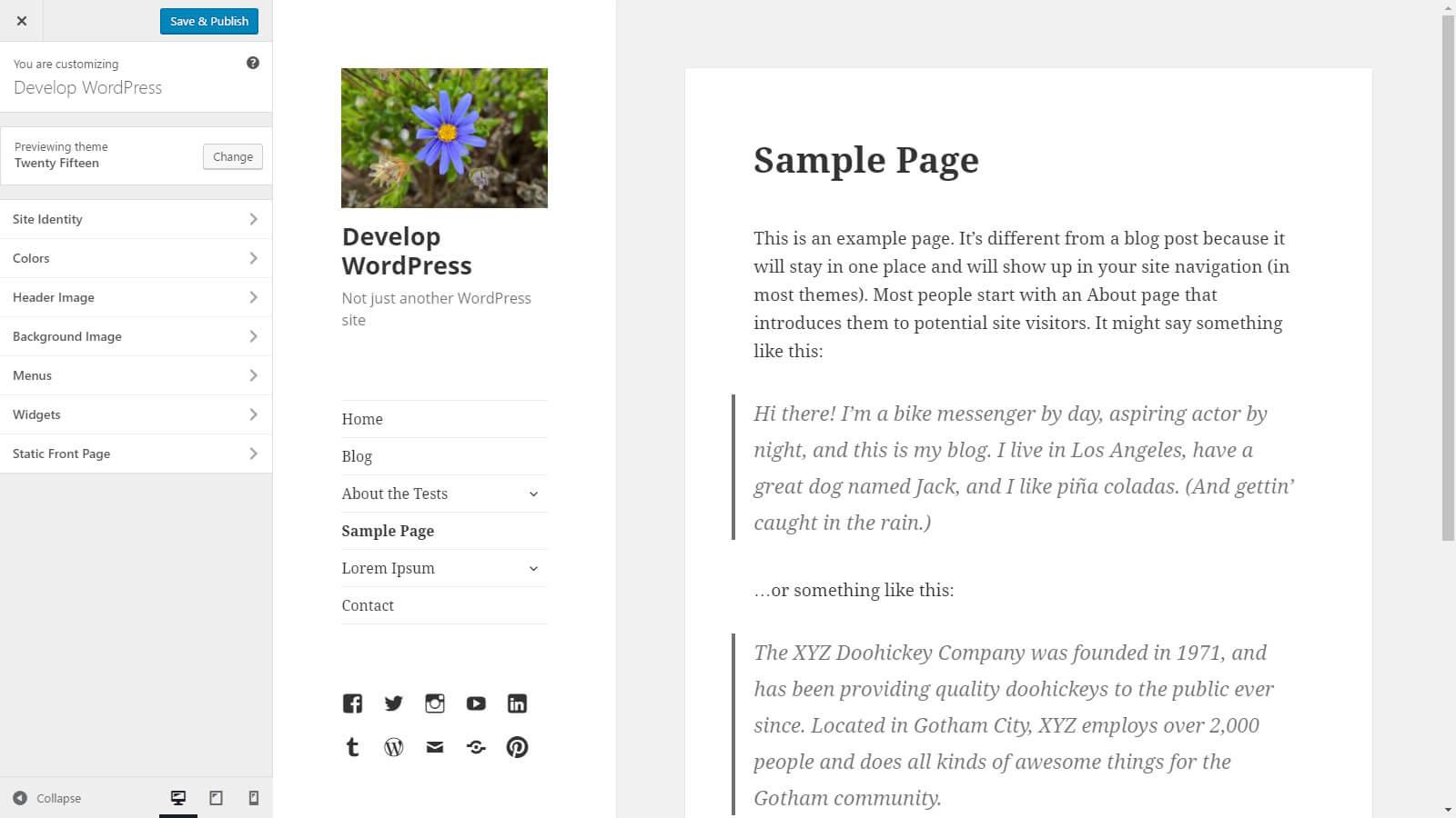 customize a theme in WordPress