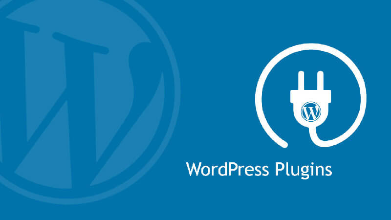 WordPress Plugins help web designers to change om the most essential parts of their websites