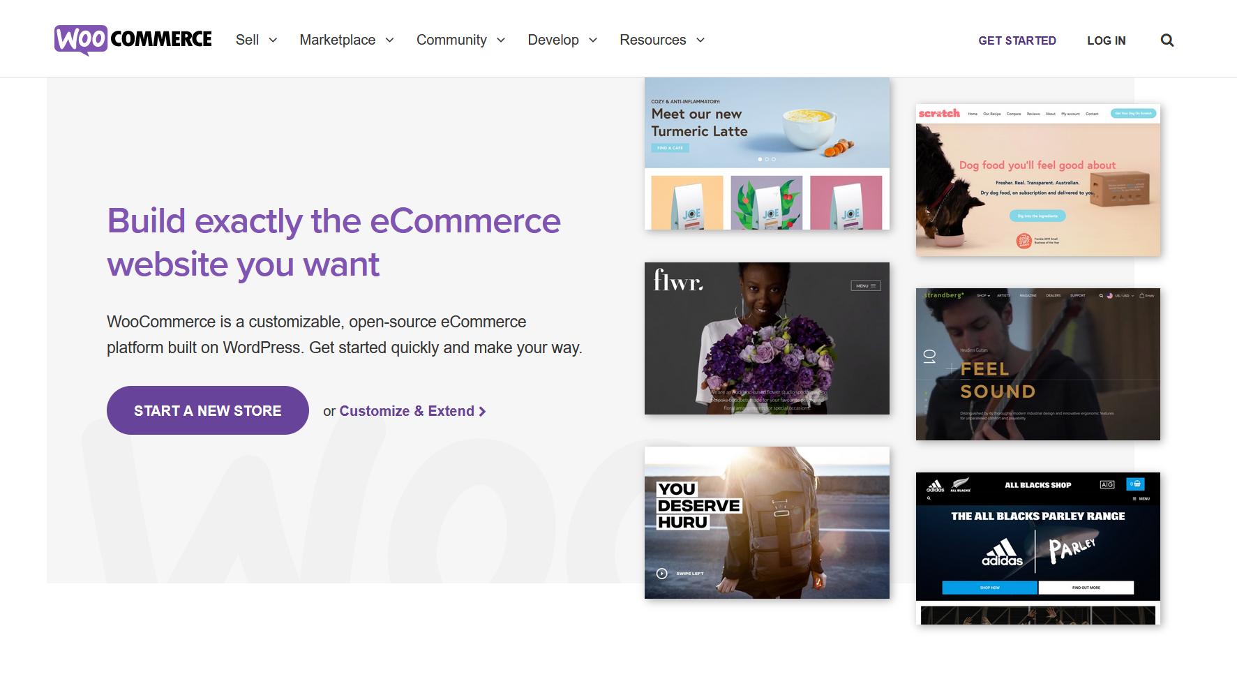 woocommerce plugin to make eCommerce websites