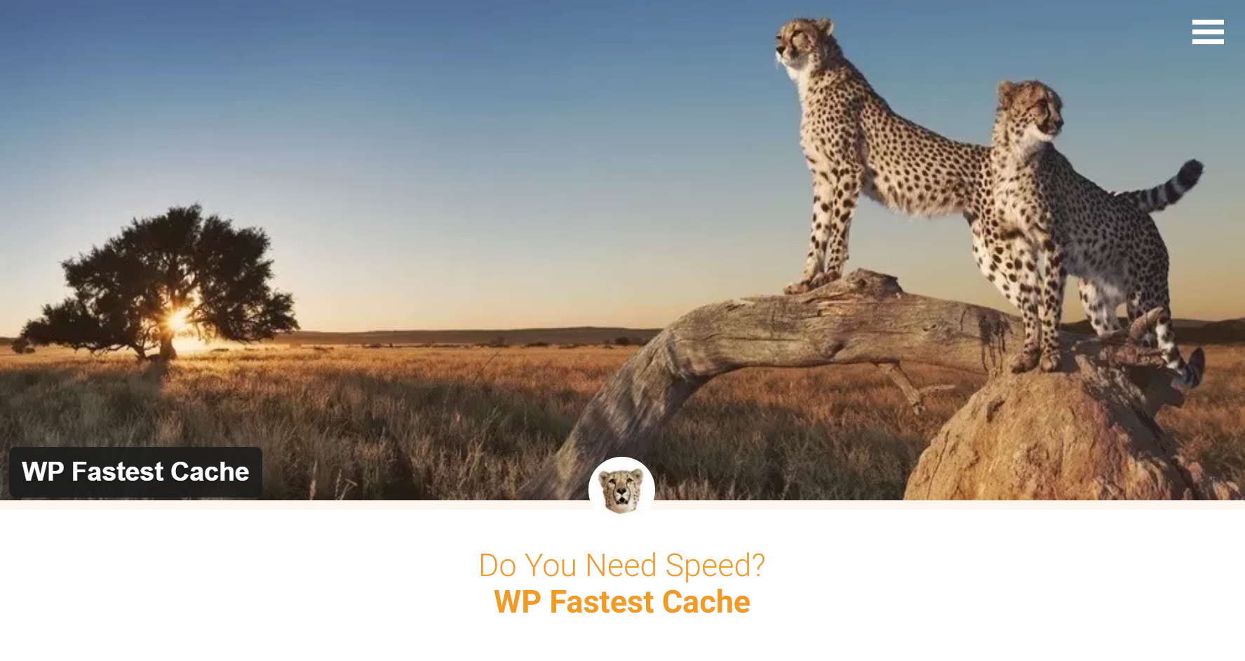 Wp fastest Cache plugin