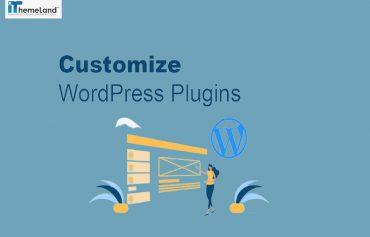 best methods to customize WordPress plugins