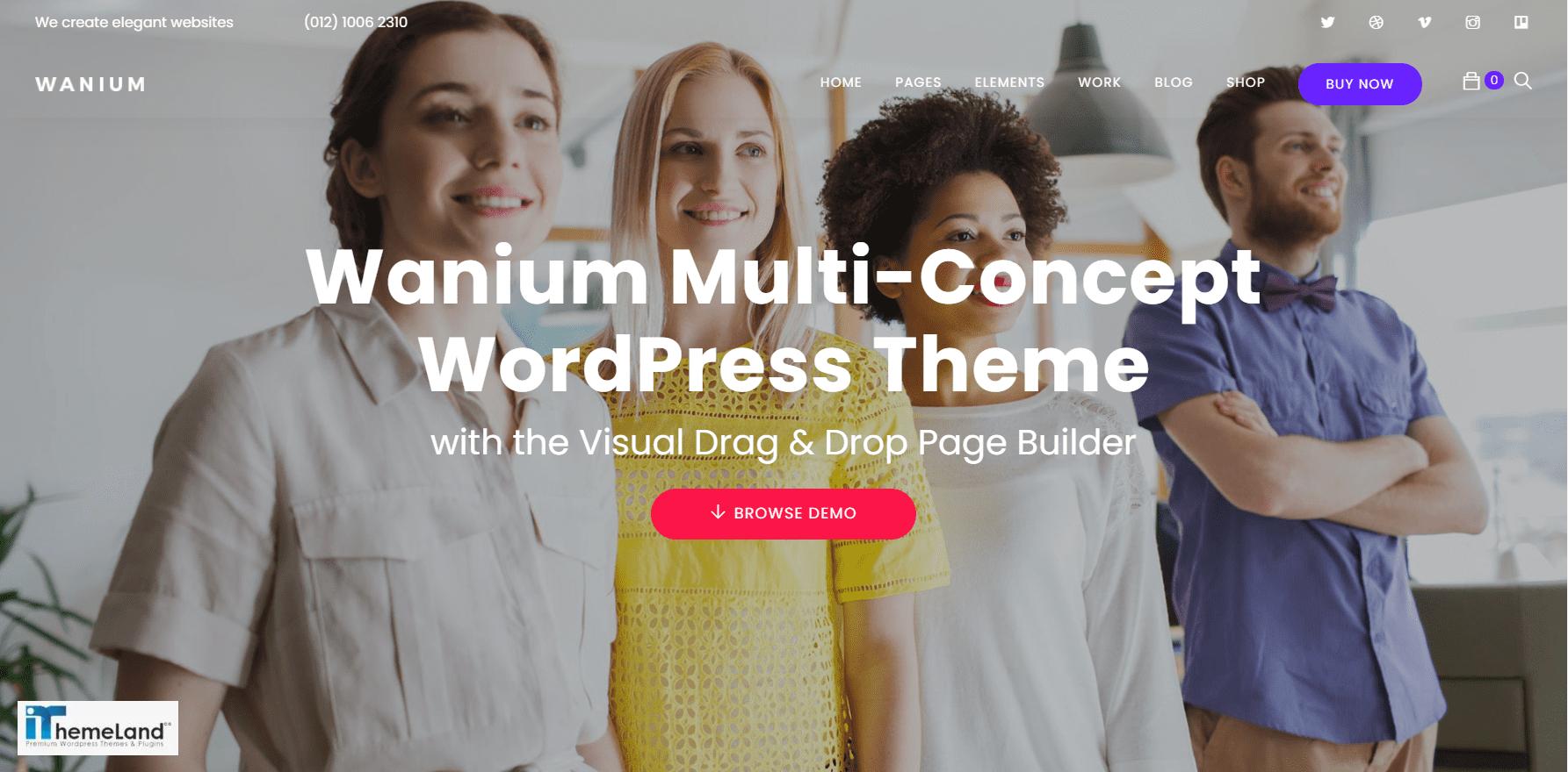 wanium theme support multisite woocommerce